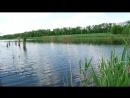 07 07 2011 Донецк рыбалка и водяная крыса