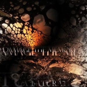 Saturate альбом Damage The Memory