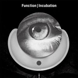 Function альбом Incubation