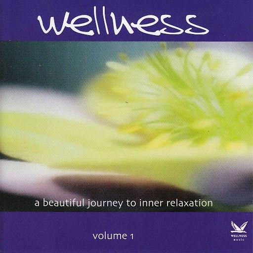 Miyagi альбом Wellness Vol. 1