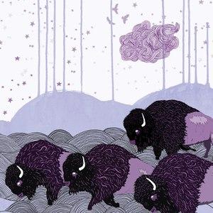 *shels альбом Plains of the Purple Buffalo
