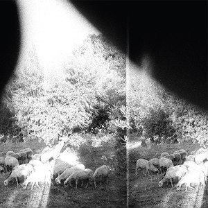 Godspeed You! Black Emperor альбом Asunder, Sweet And Other Distress