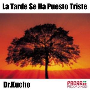 Dr. Kucho! альбом La Tarde Se Ha Puesto Triste