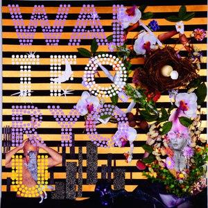 The Basics альбом Wait For You