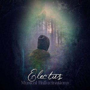 Electus альбом Musical Hallucinations