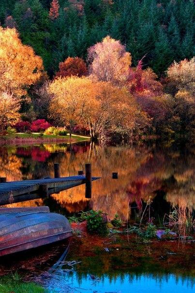 Пожелай нам, Осень, Веры и Терпенья...