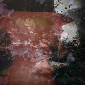 Lume альбом Perennial Phase
