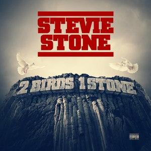 Stevie Stone альбом 2 Birds 1 Stone (Deluxe Edition)