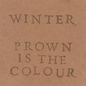 Winter альбом Brown is the Colour
