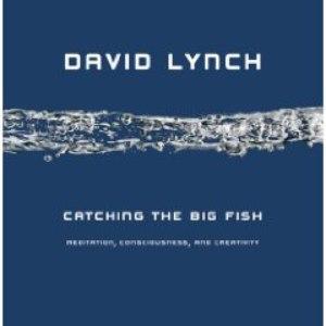 David Lynch альбом Catching the Big Fish: Meditation, Consciousness, and Creativity