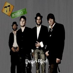 77 Bombay Street альбом Dead Bird