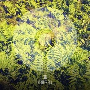 36 альбом Heather Spa
