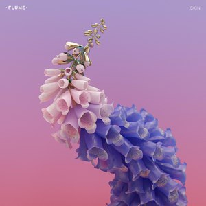 Flume альбом Skin