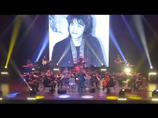 IP Orchestra | 13 февраля | ГКЗ