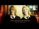 Fred and George Weasley || Top Of The World [1000 ]