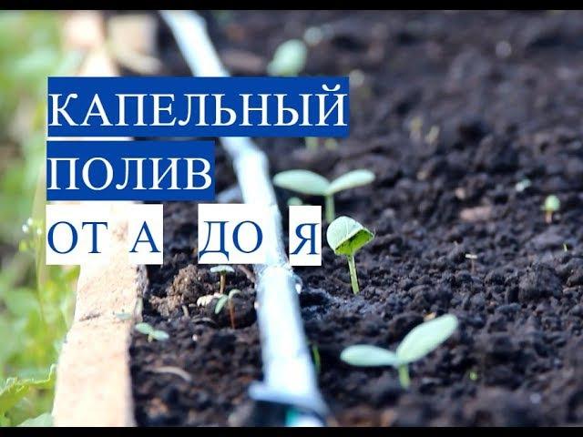 Капельный Полив от А до Я. Чтобы Огород Был В Радость!