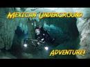Diving Mexico's Cenotes | JONATHAN BIRD'S BLUE WORLD