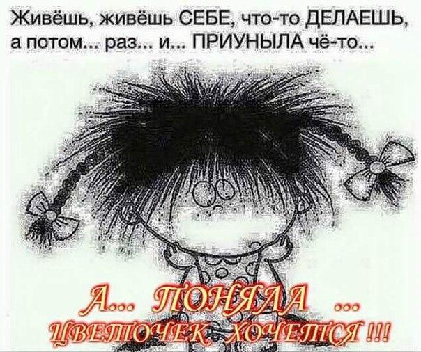 фото из альбома Екатерины Ефремовой №2
