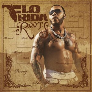 you spin me right round flo rida mp3 download