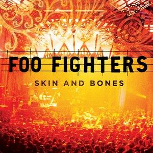 Foo Fighters альбом Skin And Bones