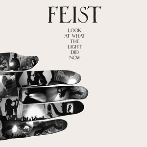 Feist альбом Look At What The Light Did Now