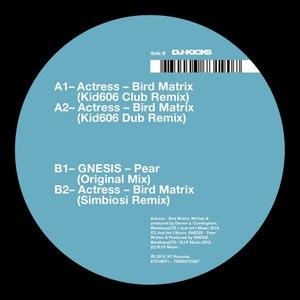 Actress альбом Bird Matrix (Remixes)