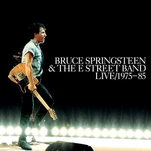 Bruce Springsteen альбом Bruce Springsteen & The E Street Band Live 1975-85 (Display Box)