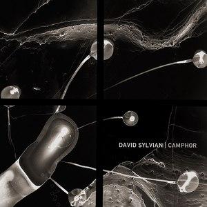 David Sylvian альбом Camphor