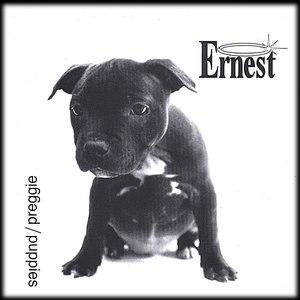 Ernest альбом AA Single Puppies/Preggie