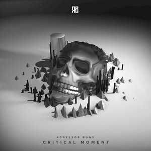 Agressor Bunx альбом Critical Moment
