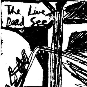 The Dead C альбом The Live Dead See