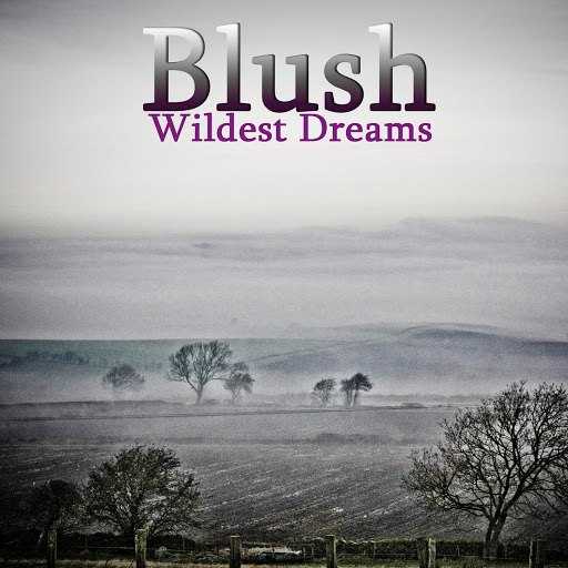 Blush альбом Wildest Dreams