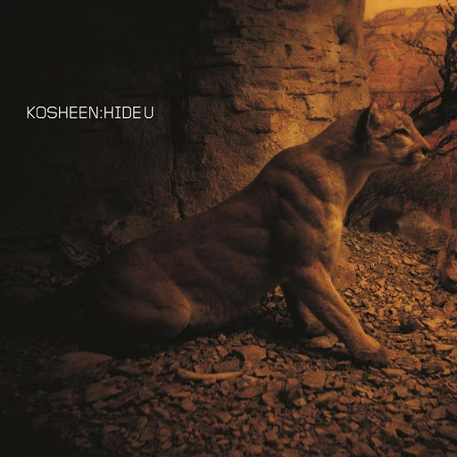 Kosheen альбом Hide U