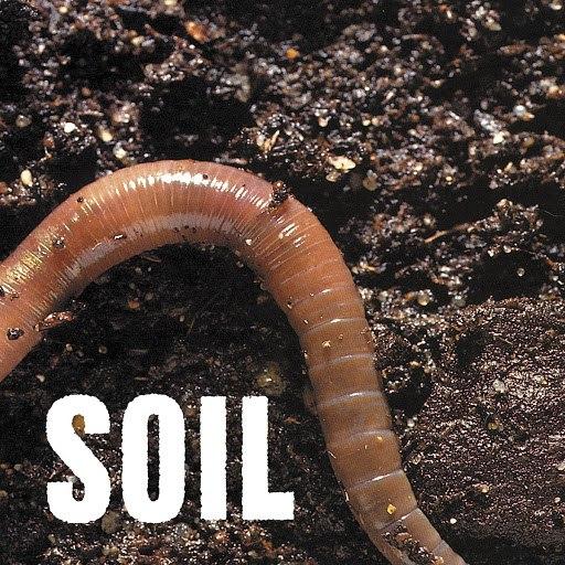 Soil альбом SOiL - EP