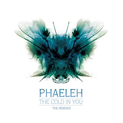 Phaeleh альбом The Cold in You (Kahn Remix) / The Cold in You (Djrum Remix)