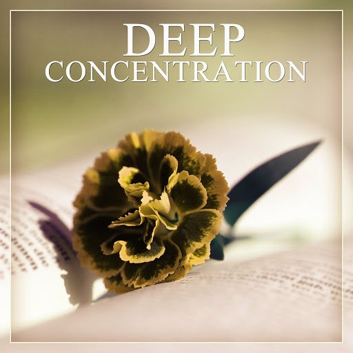 Deep Focus альбом Deep Concentration – Nature Sounds, Healing Music, Relaxing Study, Soft Music, Restful