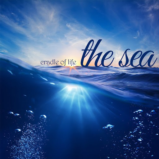 Deep Focus альбом Cradle of Life - The Sea