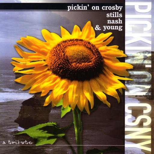 Pickin' On Series альбом Pickin' On Crosby, Stills, Nash And Young