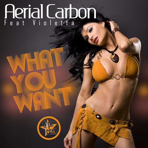 Aerial Carbon альбом What You Want (feat. Violetta)