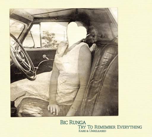 Bic Runga альбом Try To Remember Everything