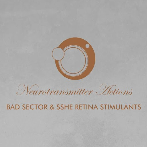 Bad Sector альбом Neurotransmitter Actions