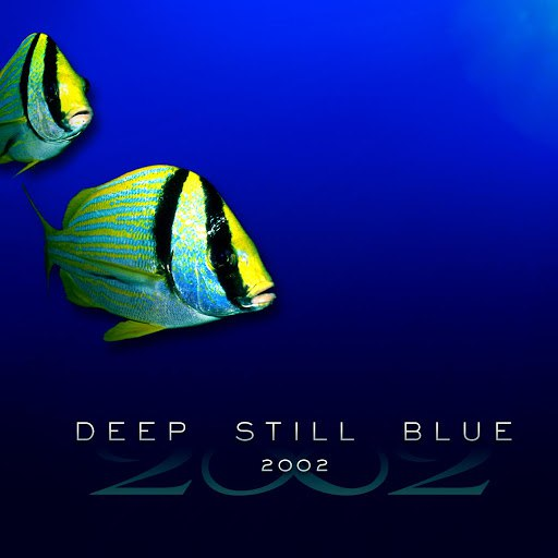 2002 альбом Deep Still Blue