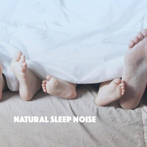 Rain альбом Natural Sleep Noise