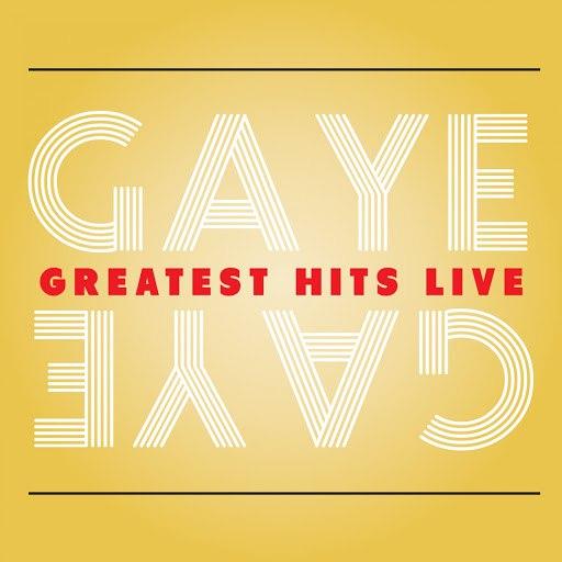 Marvin Gaye альбом Gaye Greatest Hits Live