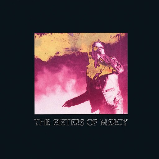 The Sisters of Mercy альбом When You Don't See Me