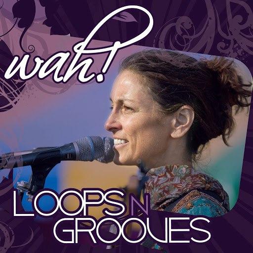 Wah! альбом Loops n Grooves