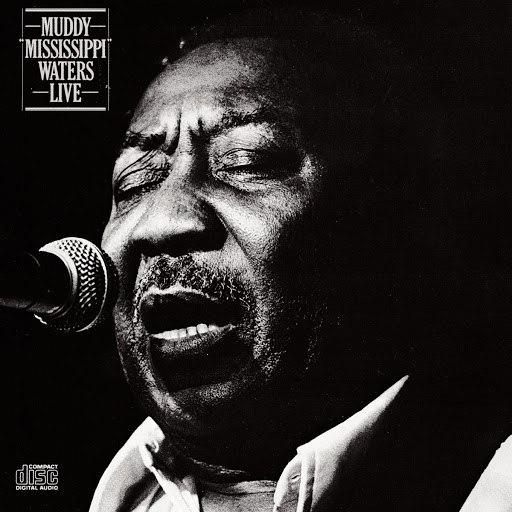 Muddy Waters альбом Live