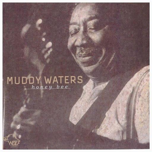 Muddy Waters альбом Honey Bee