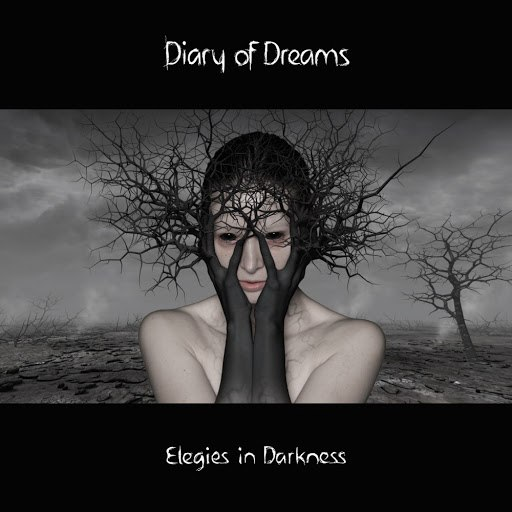 Diary Of Dreams альбом Elegies in Darkness