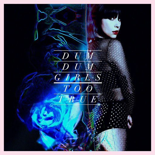 Dum Dum Girls альбом Too True